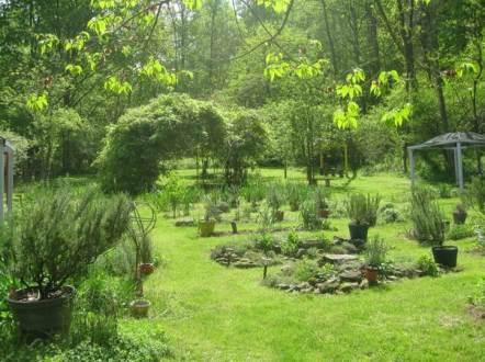 Big Fragrant Garden landscape for shopping cart