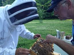 WV Veterans in Ag. bees and honey photo